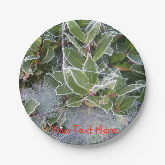 frost covered holly and cobweb christmas design paper plate