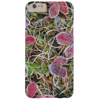 Frost covered leaves, Canada Barely There iPhone 6 Plus Case