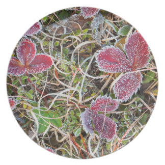 Frost covered leaves, Canada Melamine Plate