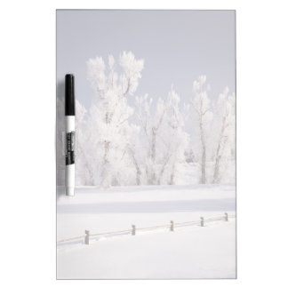 Frost Covered Trees and Fence, Colorado Dry Erase Board