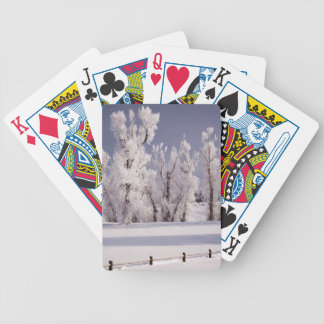 Frost Covered Trees and Fence, Colorado Bicycle Playing Cards