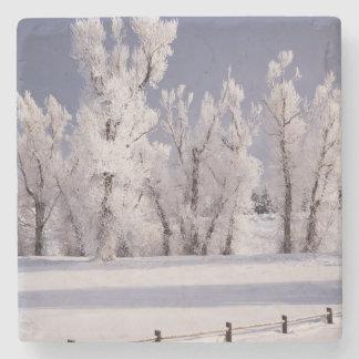 Frost cubrió los árboles y la cerca, Colorado Posavasos De Piedra