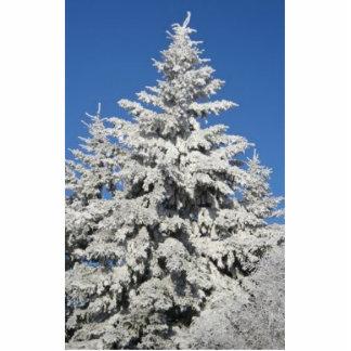 Frost en árboles esculturas fotograficas