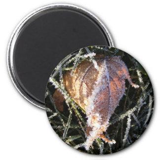 Frost en una hoja imán redondo 5 cm