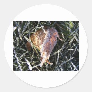 Frost en una hoja pegatina redonda