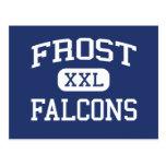 Frost Falcons Middle School Fairfax Virginia Postcard