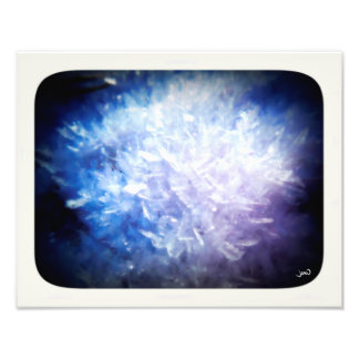 Frost Flowers Photo Print
