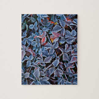 Frost on autumn leaves, Oregon Jigsaw Puzzle