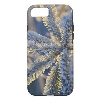 Frost on evergreen tree, Homer, Alaska iPhone 8/7 Case