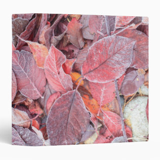 Frost on fallen leaves, Fall colors, Mill Creek 3 Ring Binder