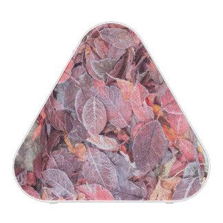 Frost on fallen leaves, Fall colors, Mill Creek Bluetooth Speaker