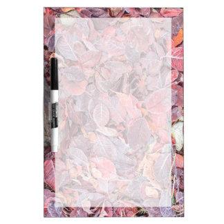 Frost on fallen leaves, Fall colors, Mill Creek Dry-Erase Board