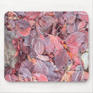 Frost on fallen leaves, Fall colors, Mill Creek Mouse Pad