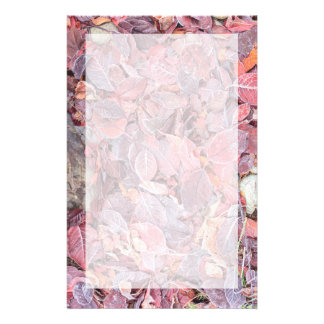 Frost on fallen leaves, Fall colors, Mill Creek Stationery