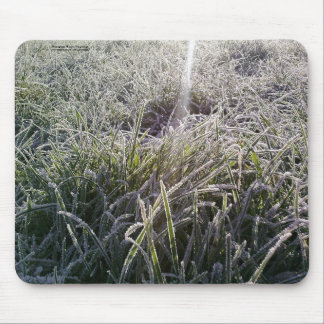 Frost on Grass at Winter Mousemat Mouse Pad
