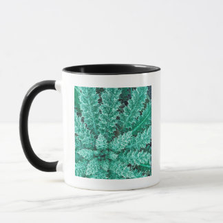 Frost On Thistle, Olympic National Park Mug