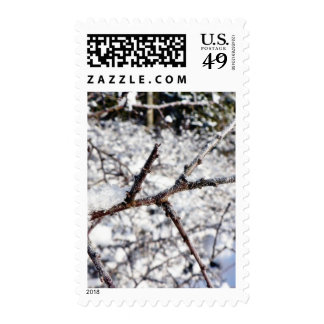 Frost On Tree Twig Stamps