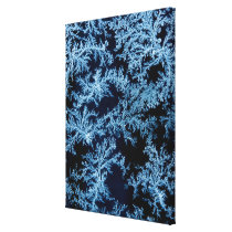 Frost patterns close-up, California Canvas Print