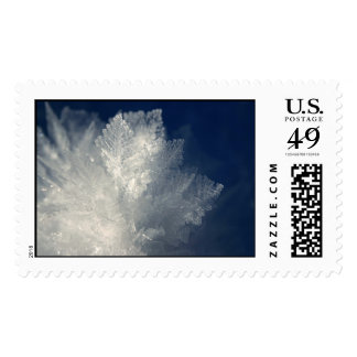 Frost Postage