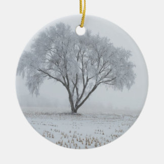 Frost Upon a Lonely Tree Ceramic Ornament