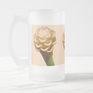 Frosted Beer Mug - Beehive Ginger