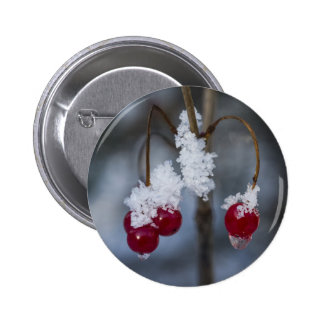 Frosted Berries Pinback Button