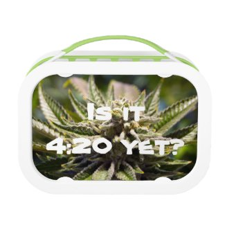 Frosted Marijuana Bud Lunch Box - Legal Cannabis Day