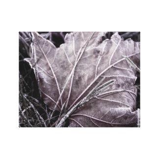 Frosted fall leaf photo canvas print