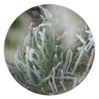 Frosted foliage party plates