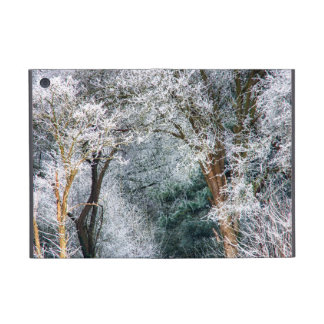 Frosted Forest HDR Case For iPad Mini