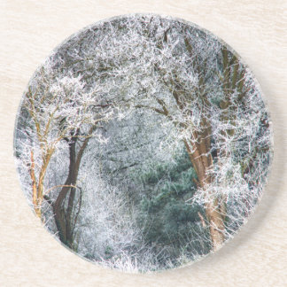 Frosted Forest HDR Beverage Coasters