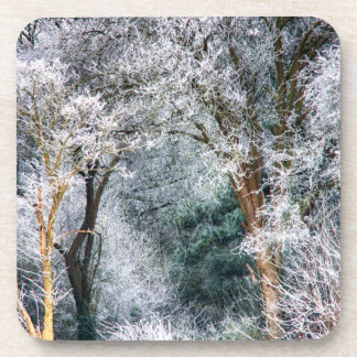 Frosted Forest HDR Drink Coasters