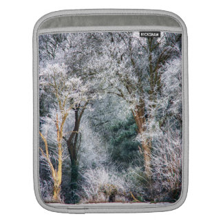 Frosted Forest HDR iPad Sleeves