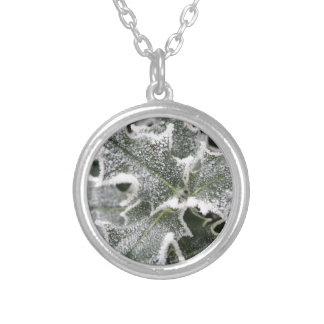 Frosted Holly Leaves Necklaces