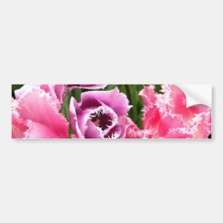 Frosted Ladies Bumper Sticker