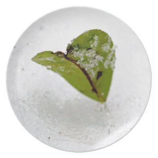 Frosted Leaf Party Plates