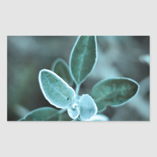 Frosted Leaf Rectangular Sticker