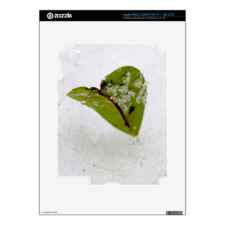 Frosted Leaf Decal For iPad 3