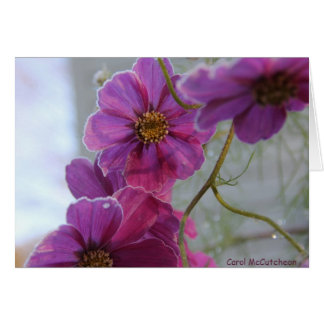 Frosted Pink Beauty Card