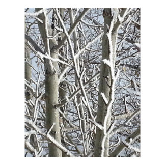 Frosted Trees 2 Letterhead