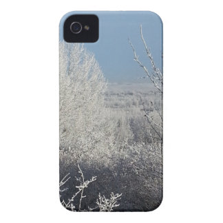 Frosted Trees 3 iPhone 4 Cover