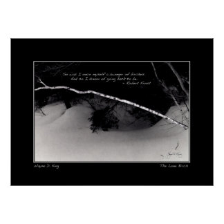 Frosts Birch Dreams Posters