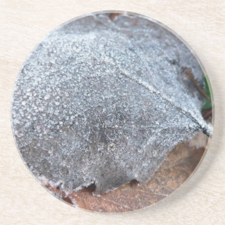 FROSTY AUTUMN LEAF DRINK COASTER