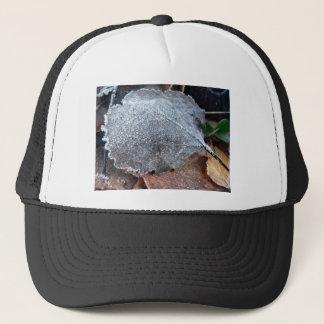 FROSTY AUTUMN LEAF TRUCKER HAT