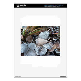 FROSTY AUTUMN LEAVES ON GROUND DECAL FOR iPad 3