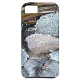 FROSTY AUTUMN LEAVES ON GROUND iPhone SE/5/5s CASE