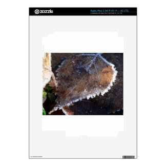 FROSTY AUTUMN SKINS FOR iPad 3