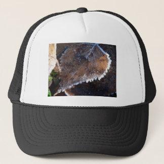 FROSTY AUTUMN TRUCKER HAT