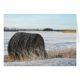Frosty Bales Greeting Card