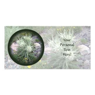 Frosty Ball Alpine Wildflowers Photo Card